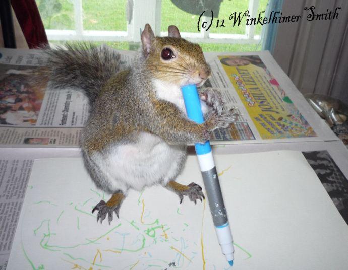 winkelhimer smith the painting squirrel