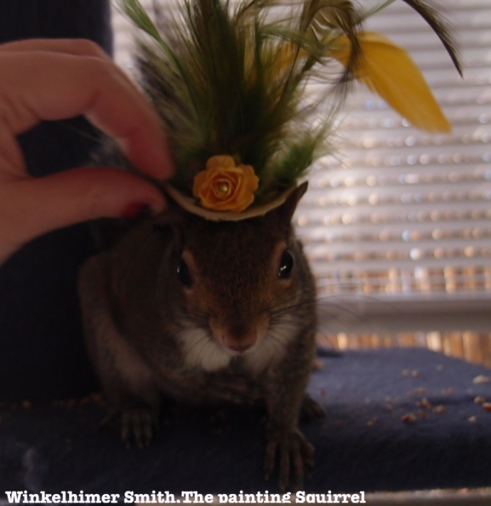 Winkelhimer the squirrel in a hat